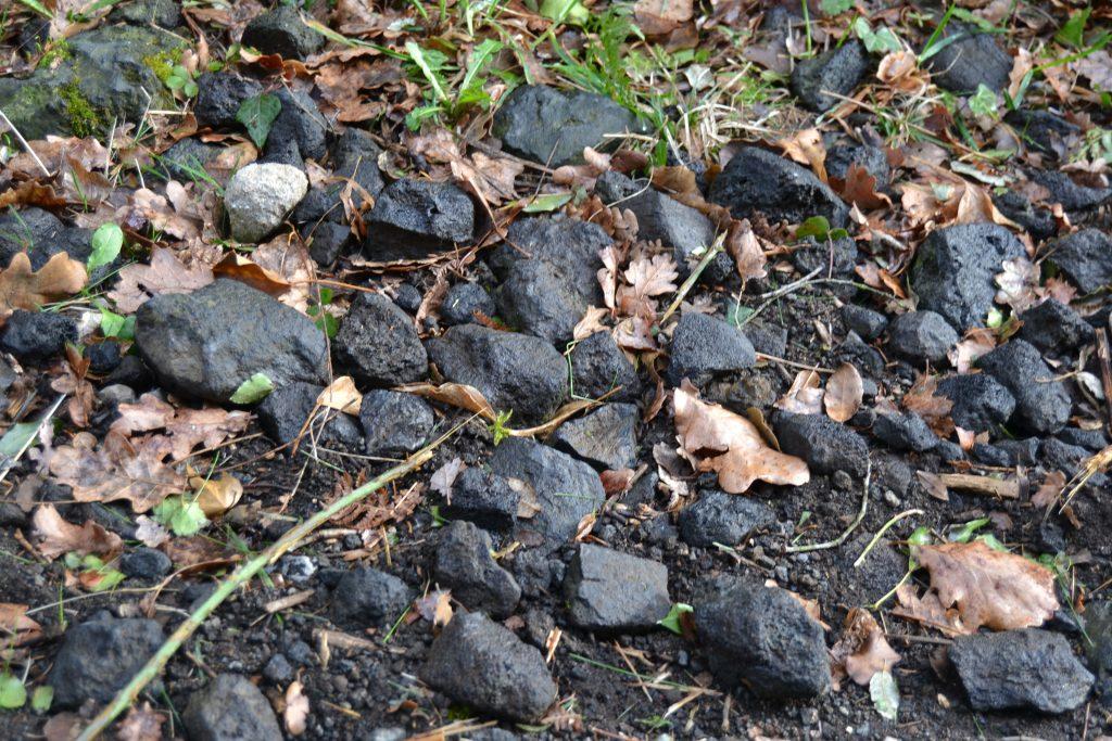 piedras volcanicas
