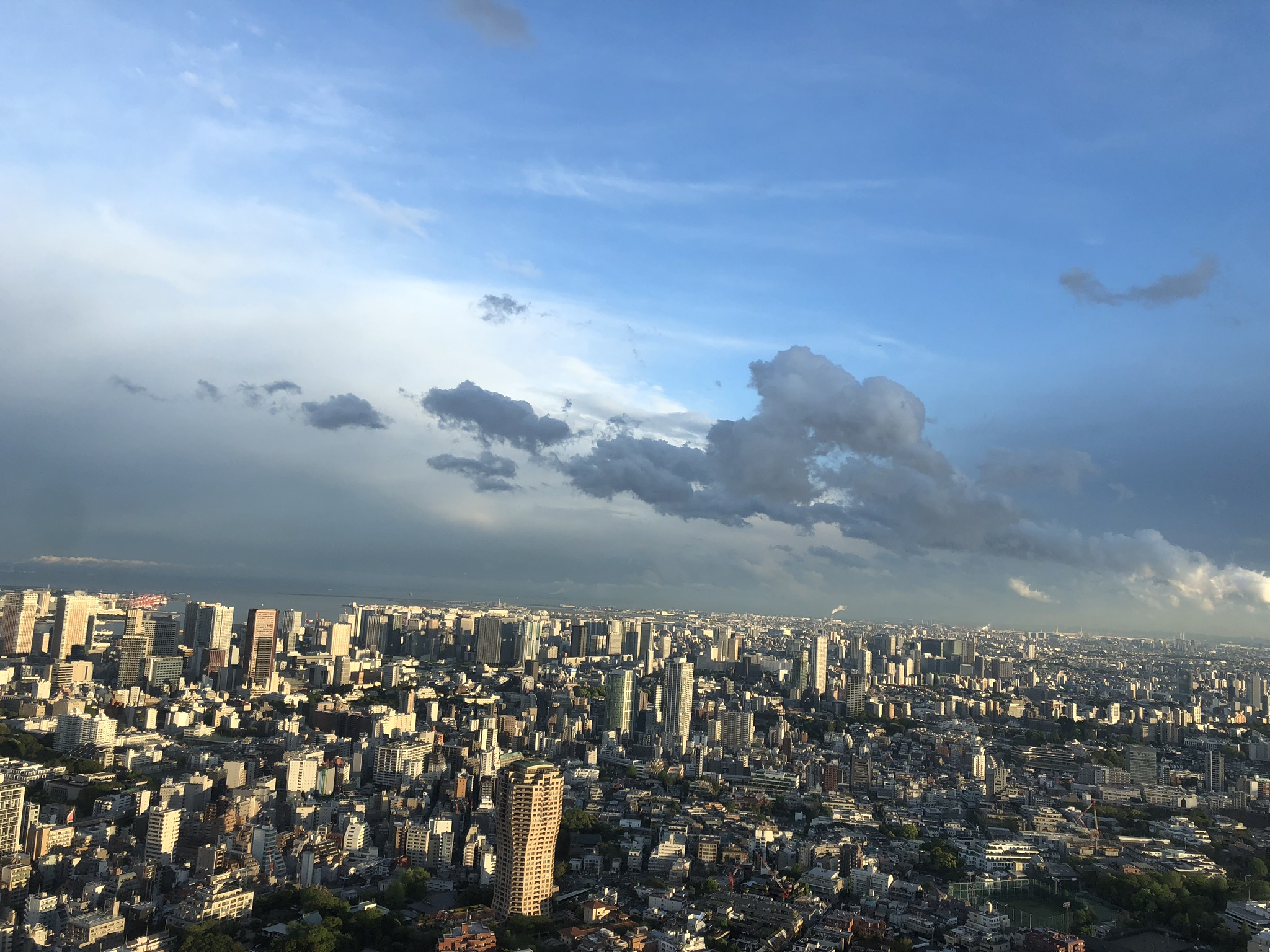 Mirador del rascacielos Tokyo City View